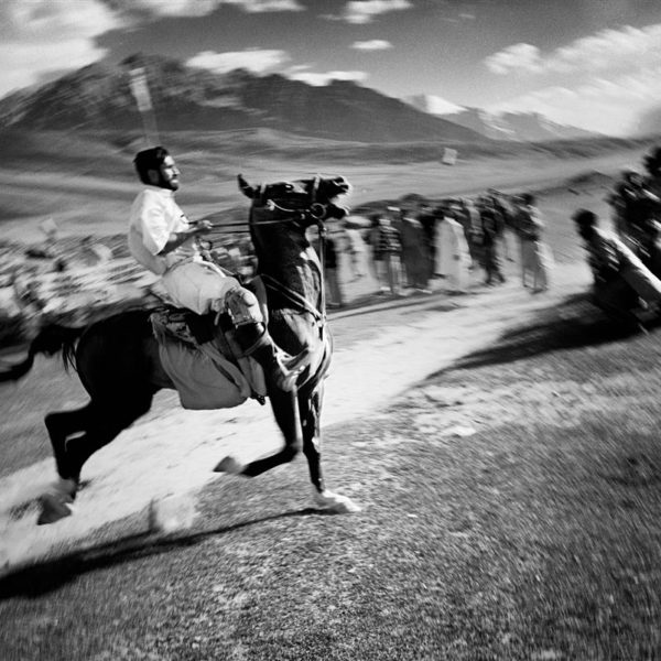 A runaway horse heads directly into the crowd and makes people flee.  Shandur Pass is situated  3900 meters above sea level in the Pakistani Himalaya. Every year a polo tournament held at this remote plain a 9 hours jeepride fom the nearest town attracts thousands of spectators. The opposing teams come from two villages on either side of the pass. The  pass which normally only inhabits a police checkpost and some sheepherders is for a few days transformed to a swarm of people, tents and horses. Four matches are played over three days. The game is played without any written rules and injuries to both jockeys and horses are common. This year a horse died during the match due to a heartattack caused by the altitude. It is a great honor to win the tournament, and victorious players are held in high regard.