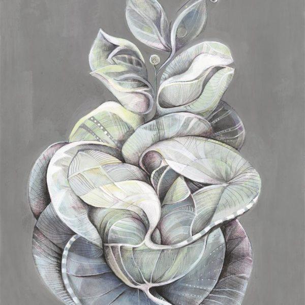 greay leaf